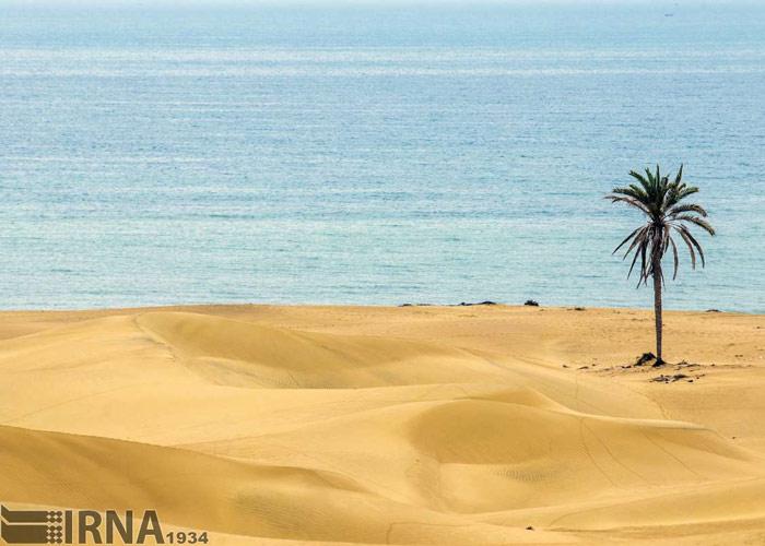 iran desert - desert in iran - Darak